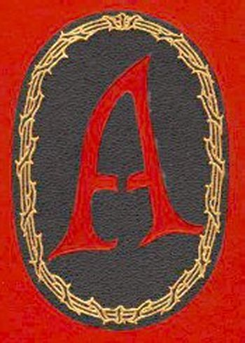 critical essays about the scarlet letter